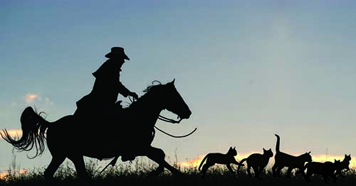 Quoting Tax Preparation fees is like herding cats