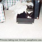 princess-in-jimmy's-saxophone-case