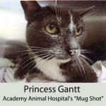 princess-gantt-hospital-mug-shot